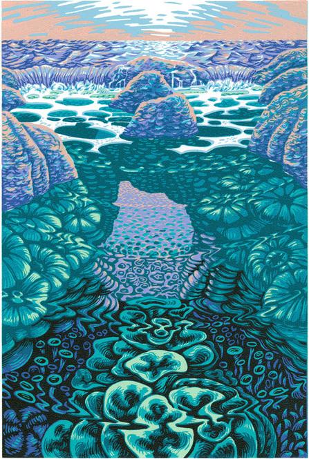 tide-pool